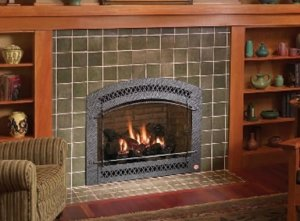 Nassau County Fireplace Insert